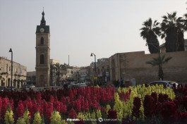 Площадь часовой башни в Яффо - прямо за башней, немного вглубь, находится блошиный рынок.
