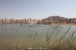 Парк Тимна, недалеко от Эйлата - настоящее озеро посреди пустыни, прямо оазис!