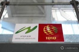 W - символ института спорта имени Вингейта.