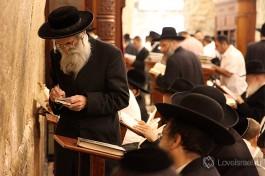 Религиозные евреи в молитве.