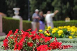Замечательные Бахайские сады в Хайфе. Здесь покоится пророк Бахаулла.