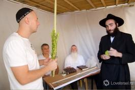 Букет из 4-х видов растений (арбаат а-миним) - символизируют единство еврейского народа.