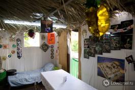 Внутри шалаша Сукка. Принято создавать праздничную атмосферу )
