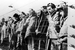 Холокост. Узники концлагерей.