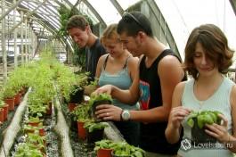 Израильское сельское хозяйство - одно из самых технологичных и передовых в мире.