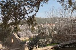Вид на иерусалимские горы.