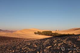 Около кратера  Рамон находится маленький городок Мицпе Рамон.