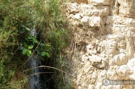 Один из двух водопадов Эйн-Геди.