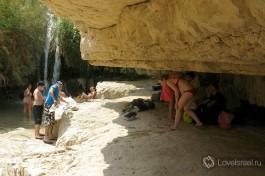 Уютное место, чтобы спрятаться от солнца. Не бойтесь, они не сплющатся, мы проверяли :)