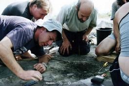 Исторический момент: находка века: коврик, сплетенный из травы. Охало-2, Киннерет. 20-23 тысячи лет до нашей эры.
