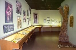 При входе в музей можно посмотреть различные экспозиции.