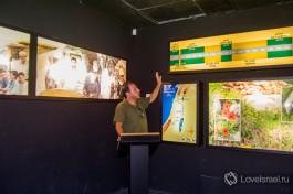 Гид музея Кфар Нацерет рассказывает о временных эпохах на Святой земле.